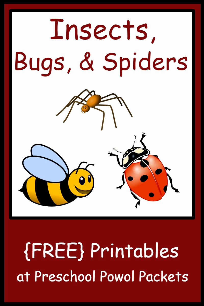 Free Insect Worksheets Best Of Free Printable Insect Worksheets for Preschoolers