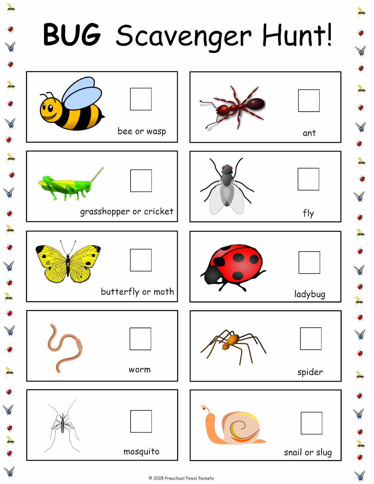 Free Insect Worksheets Lovely Free Bug Scavenger Hunt