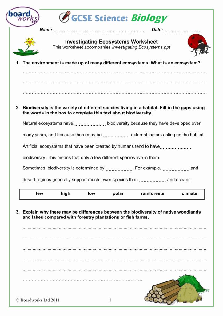 Free Printable Ecosystem Worksheets Beautiful Ecosystem Worksheet