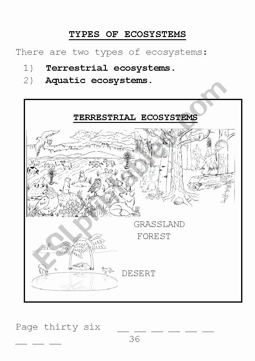 Free Printable Ecosystem Worksheets Inspirational 20 Free Printable Ecosystem Worksheets