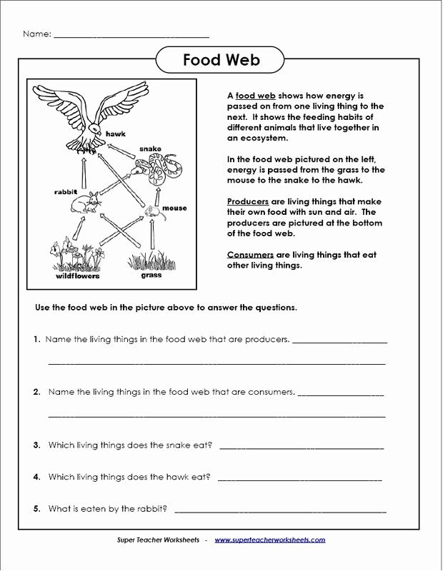 Free Printable Ecosystem Worksheets Luxury Ecosystem Worksheets
