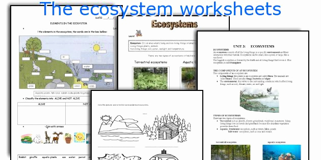 Free Printable Ecosystem Worksheets New the Ecosystem Worksheets