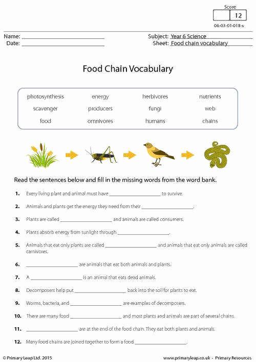 Free Printable Ecosystem Worksheets Unique Ecosystem Worksheets