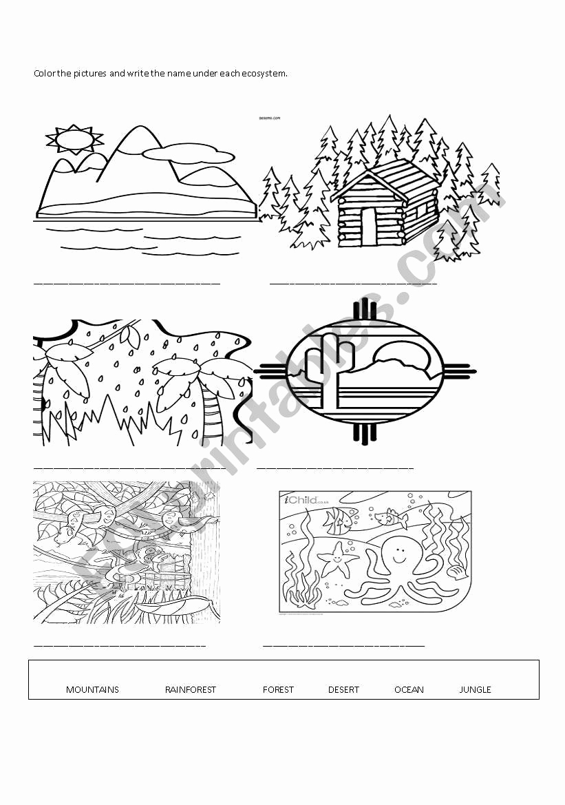 Free Printable Ecosystem Worksheets Unique Ecosystems Esl Worksheet by Pamebect