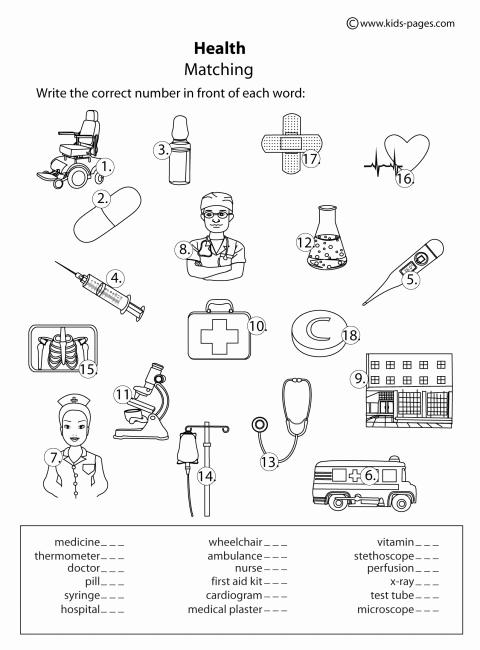 Free Printable Health Worksheets Fresh Health Matching B&w Worksheet