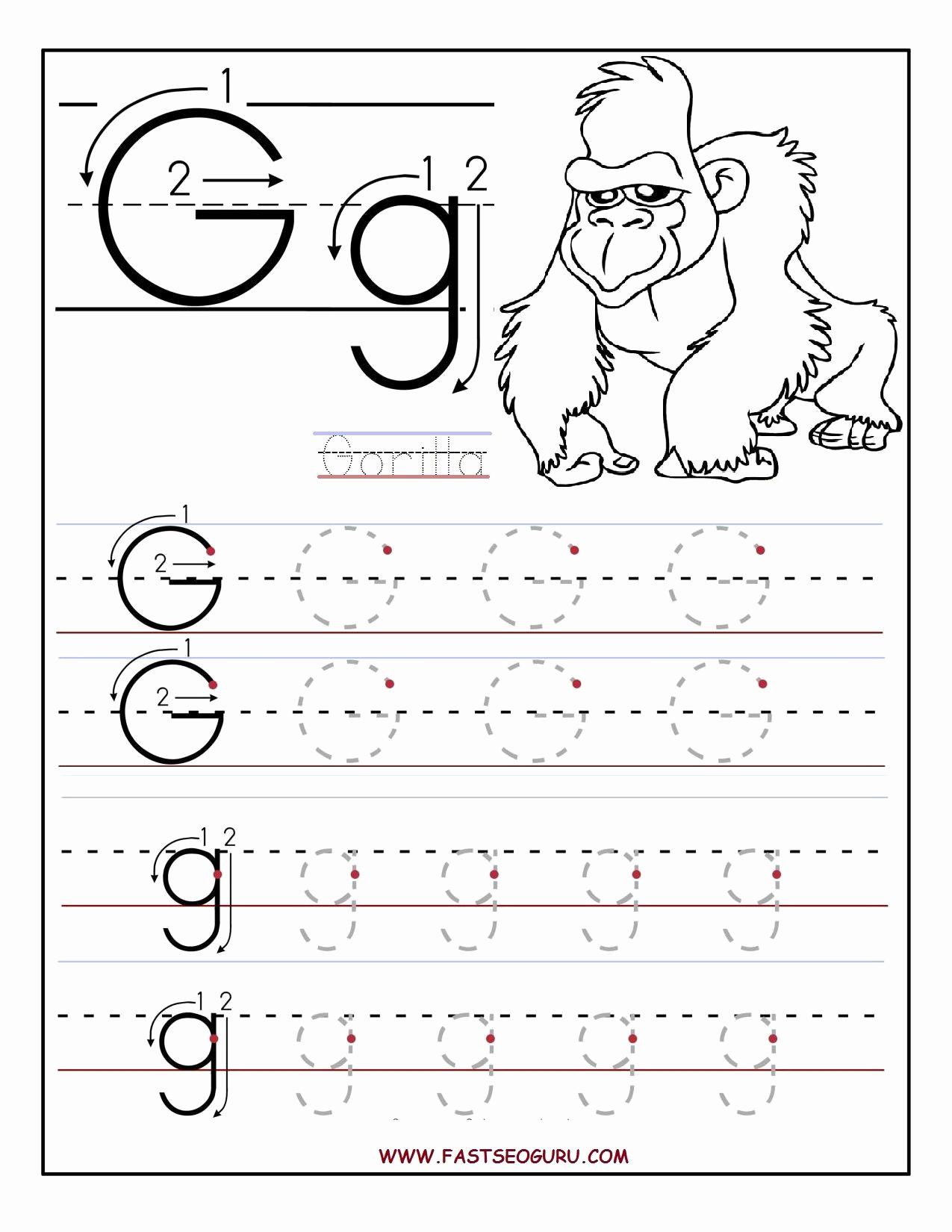 G Worksheets for Preschool Unique Alphabet G Worksheets