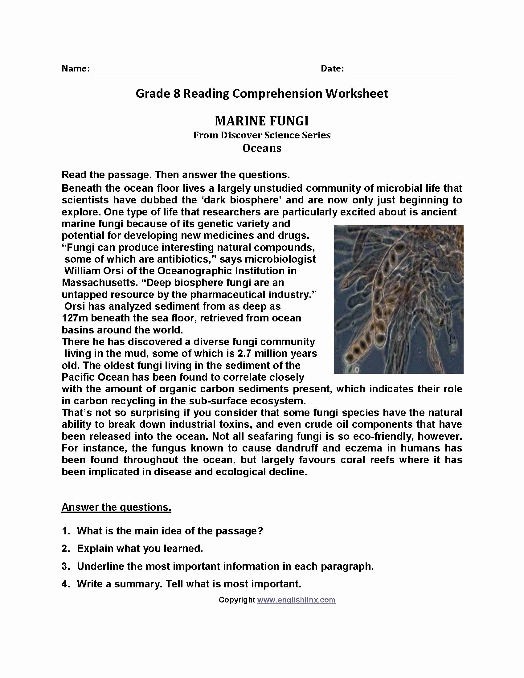 Grammar Worksheets for 8th Graders Beautiful 8th Grade Printable Worksheets that are Slobbery