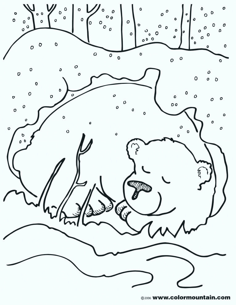 Hibernation Worksheets for Preschool Awesome Worksheets On Hibernation for Preschoolers