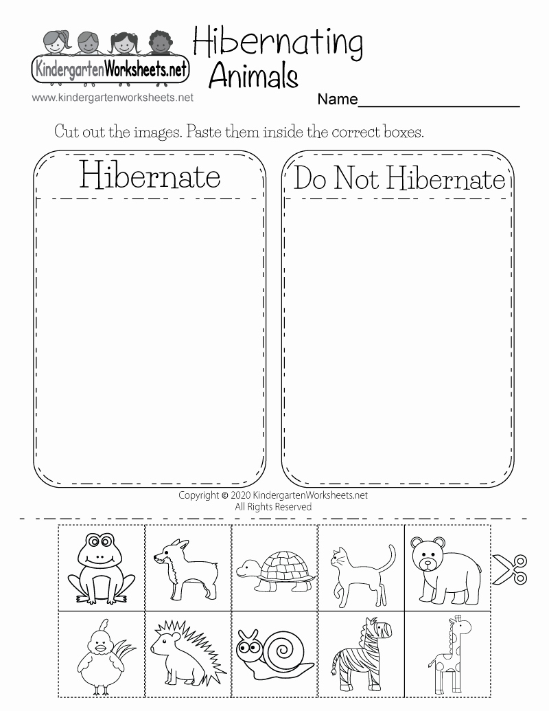 Hibernation Worksheets for Preschool Beautiful Hibernating Animals Worksheet for Kindergarten Free