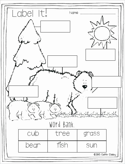 Hibernation Worksheets for Preschool Beautiful Hibernation Worksheets for Preschool Hibernation