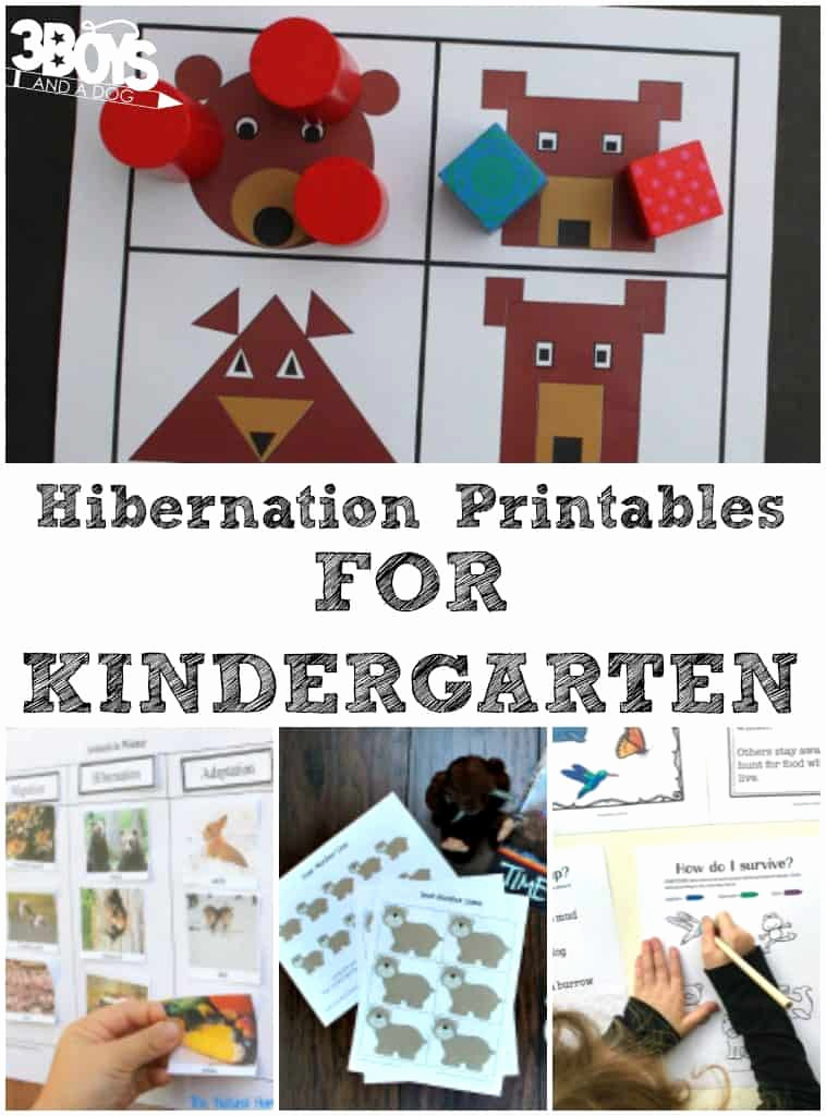 Hibernation Worksheets for Preschool Best Of Kindergarten Hibernation Printables – 3 Boys and A Dog – 3