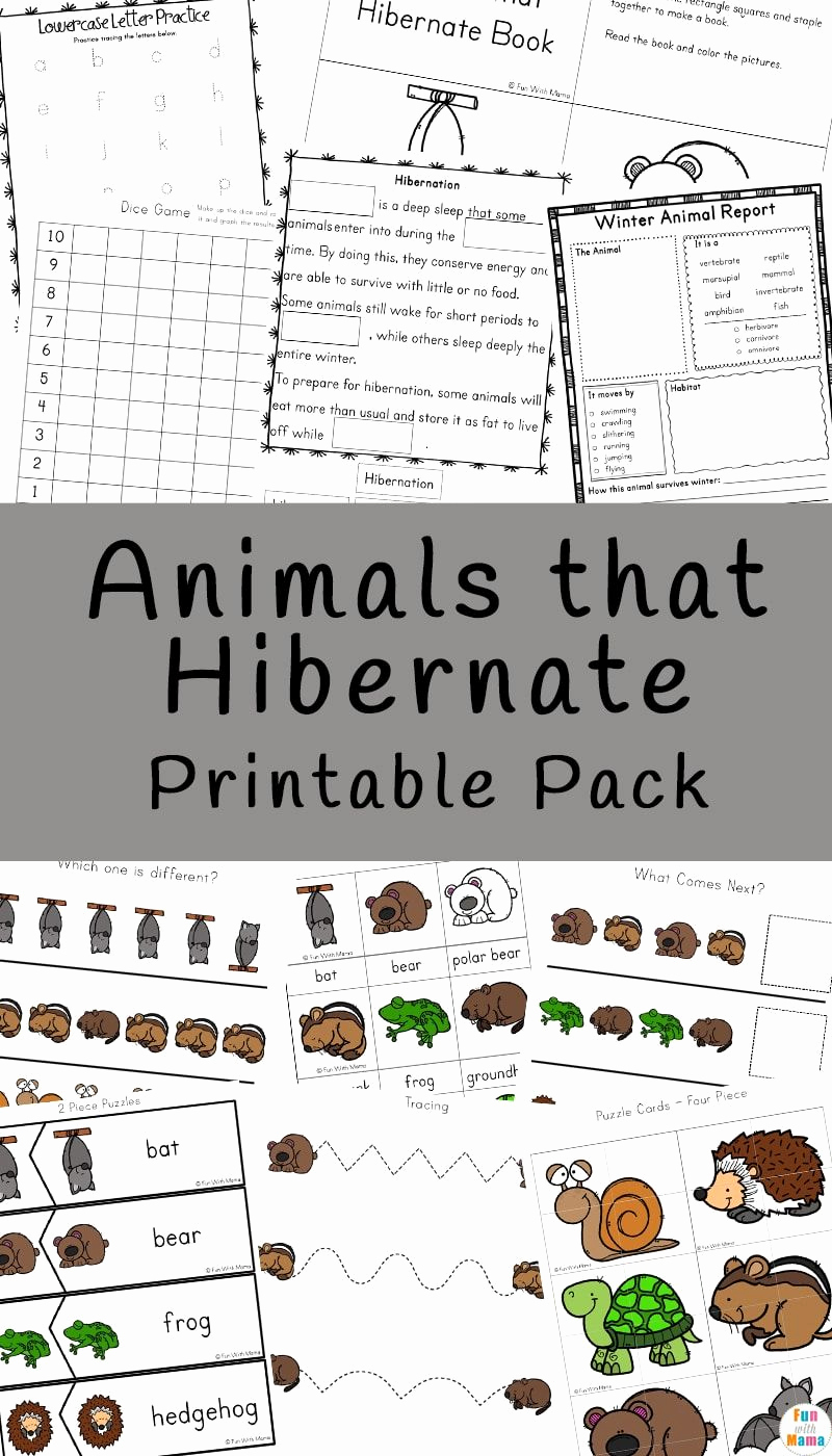 Hibernation Worksheets for Preschool Lovely Learn More About Animals that Hibernate with This Fun