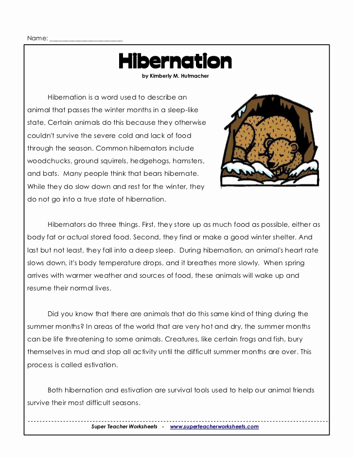 Hibernation Worksheets for Preschool Luxury 3rd Hibernation