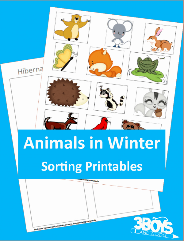 Hibernation Worksheets for Preschool Luxury Animals In Winter Hibernating Printable – 3 Boys and A Dog