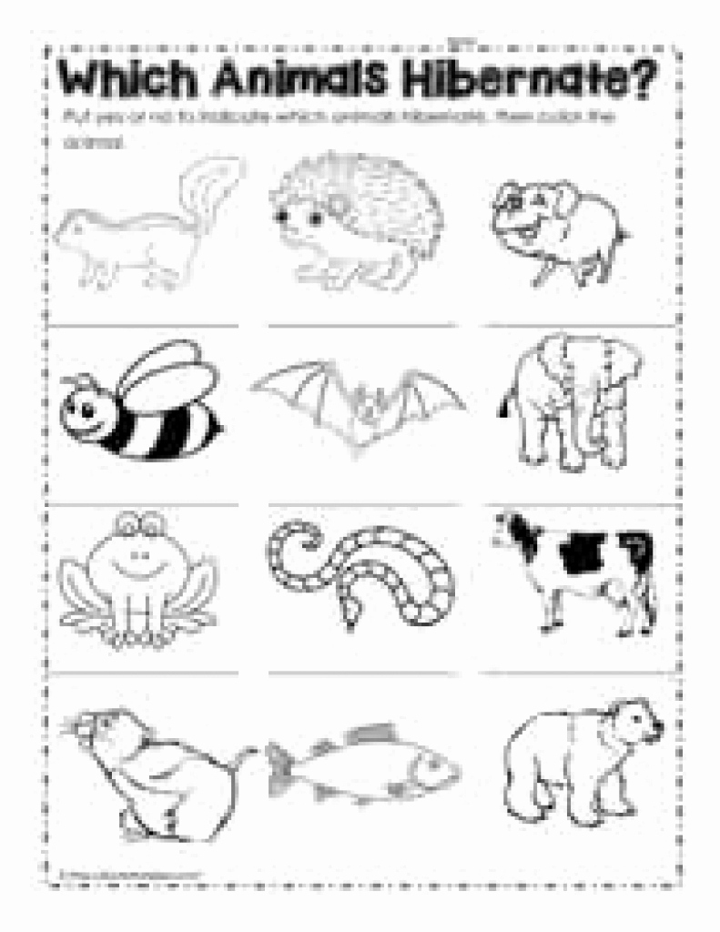 Hibernation Worksheets for Preschool Unique Free Printable Hibernation Worksheets