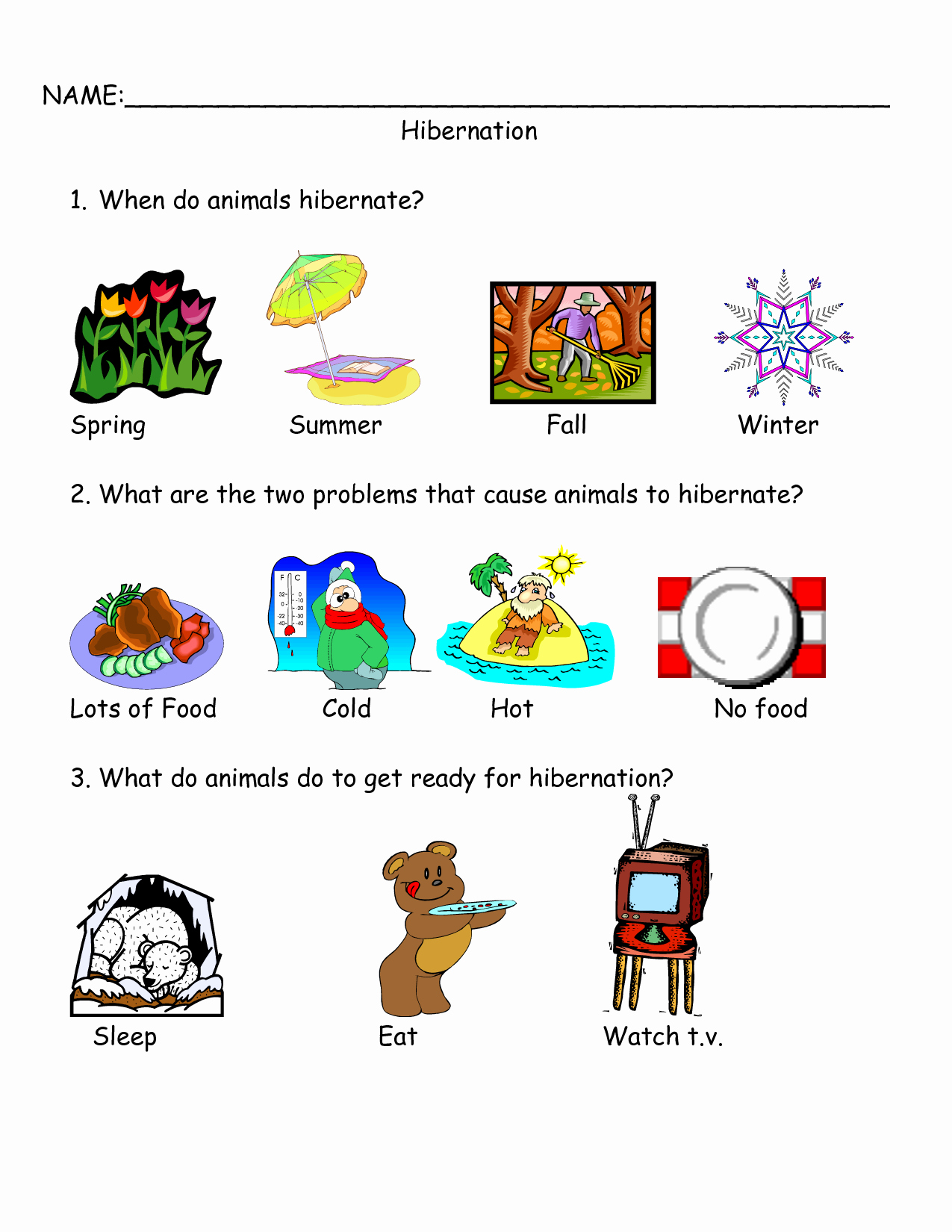Hibernation Worksheets for Preschool Unique Worksheets On Bear Hibernation Google Search