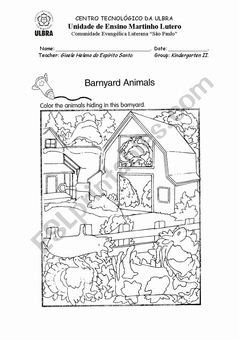 Hidden Animal Pictures Worksheets Elegant Hidden Animal Worksheets