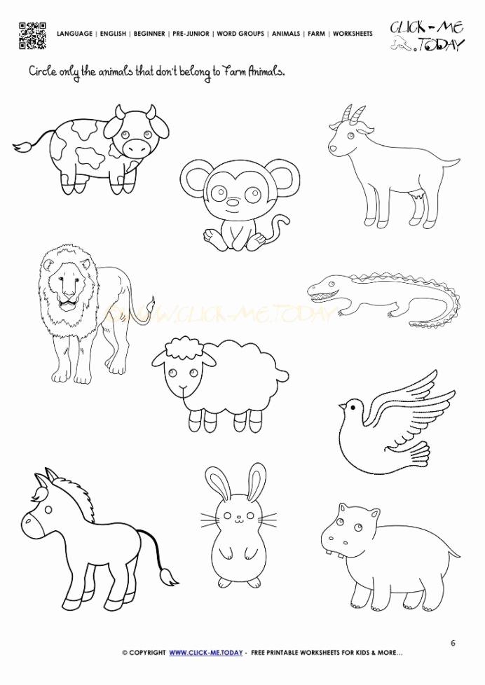Hidden Animal Pictures Worksheets Inspirational 30 Sense Smell Worksheets