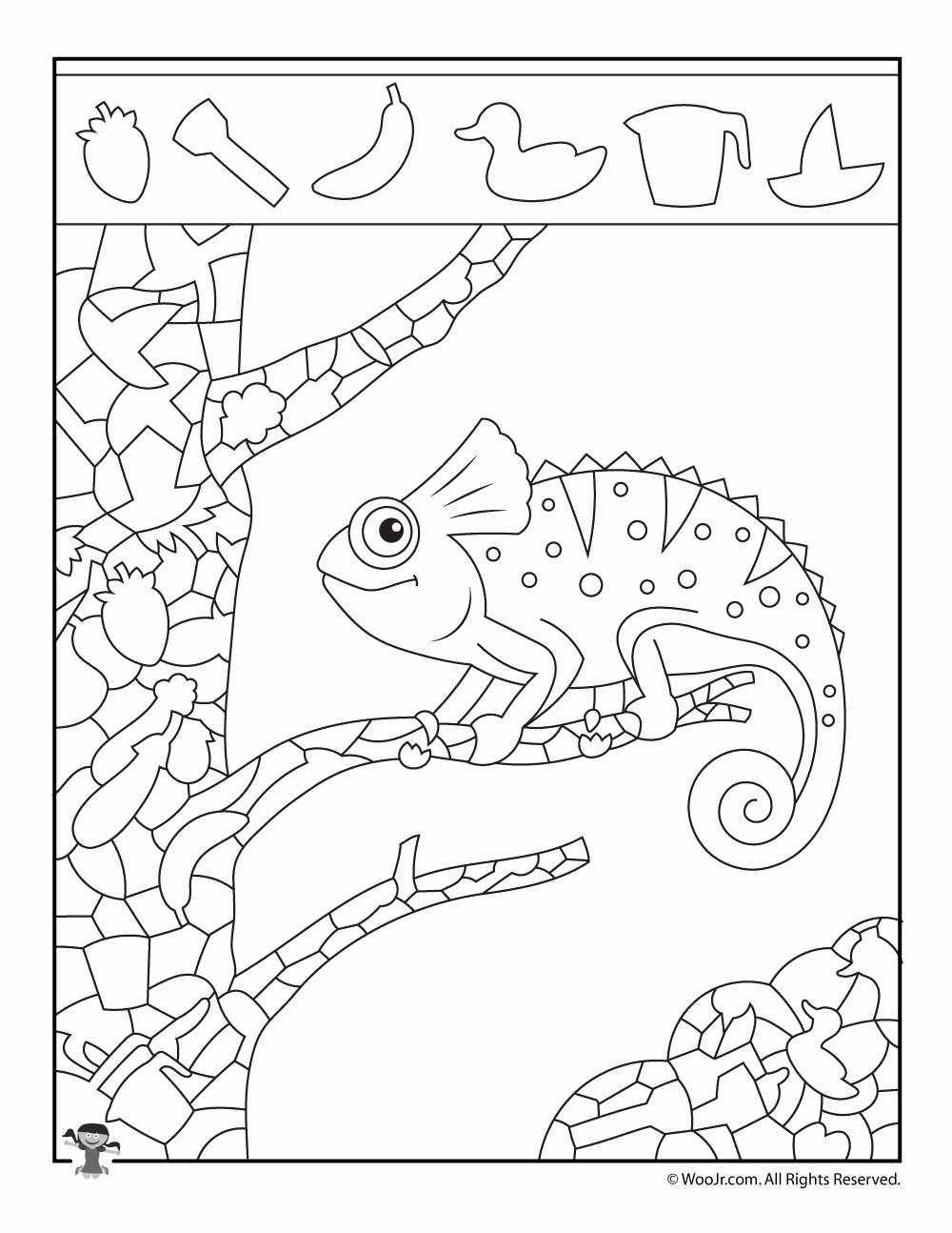 Hidden Animal Pictures Worksheets Unique Iguana Hidden Picture Activity