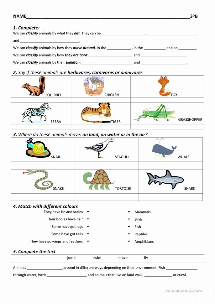 Hiset social Studies Worksheets Beautiful 30 Hiset social Stu S Worksheets