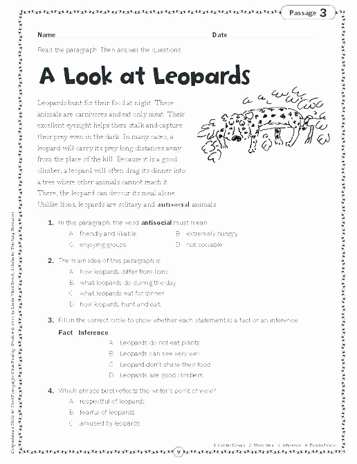 Homographs Worksheet 3rd Grade Elegant 25 Homographs Worksheet 3rd Grade
