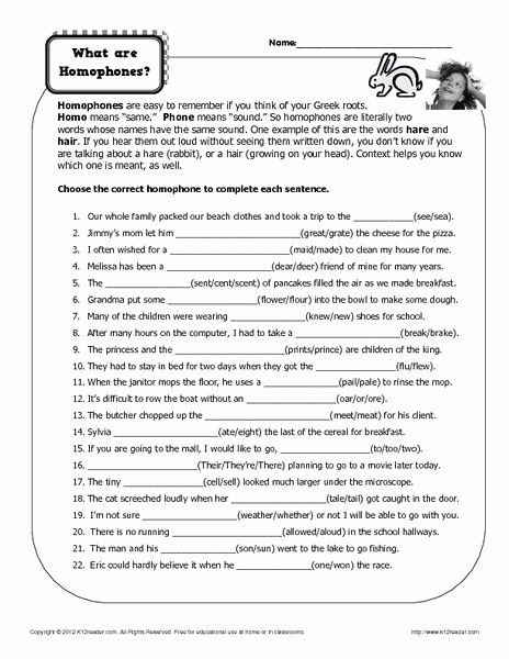 Homonym Worksheets Middle School Inspirational Homonym Worksheets Middle School In 2020 with Images