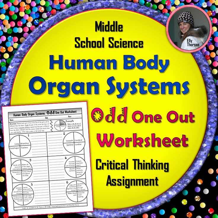 Human Body Worksheets Middle School Awesome 310 Best Images About Elly Thorsen S Middle School Science