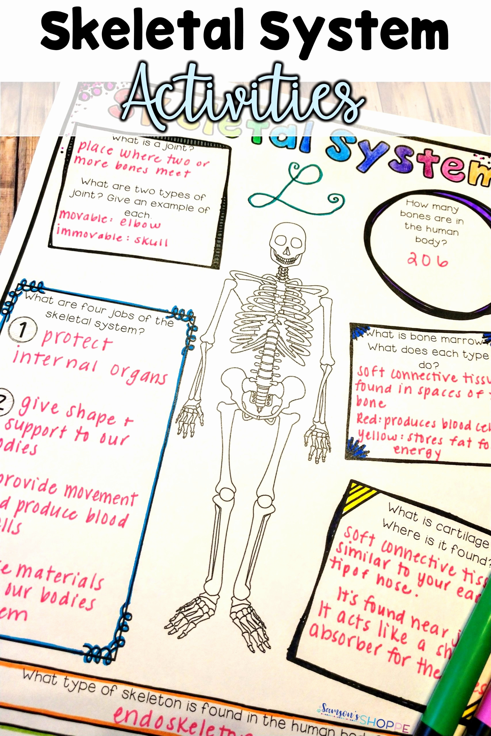 Human Body Worksheets Middle School Lovely 20 Human Body Worksheets Middle School
