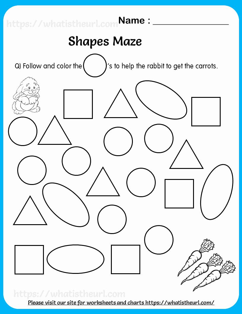 Identify Shapes Worksheet Kindergarten Elegant Worksheet On Identifying Circle Shape