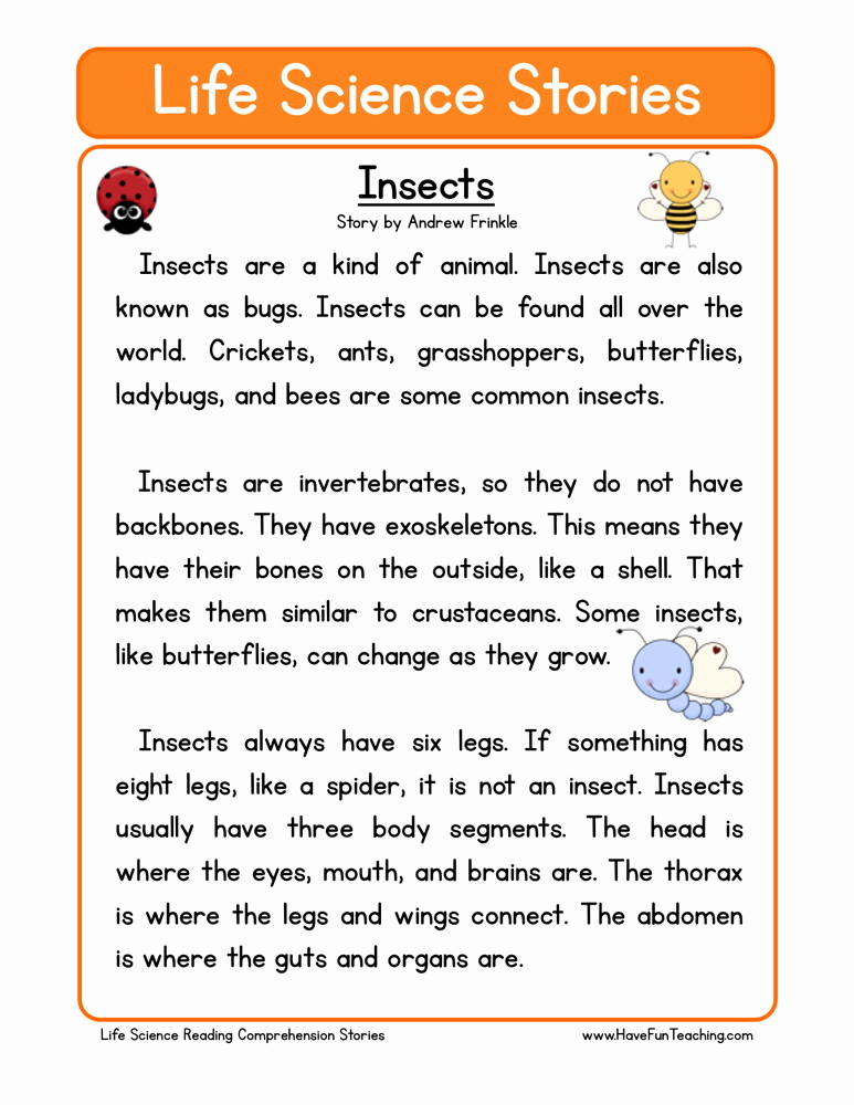 Insect Worksheets for First Grade Awesome Reading Prehension Worksheet Insects
