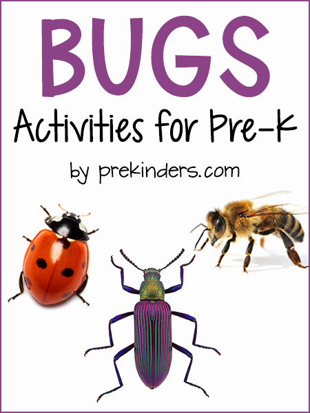 Insect Worksheets for Preschoolers Awesome Bugs theme Prekinders
