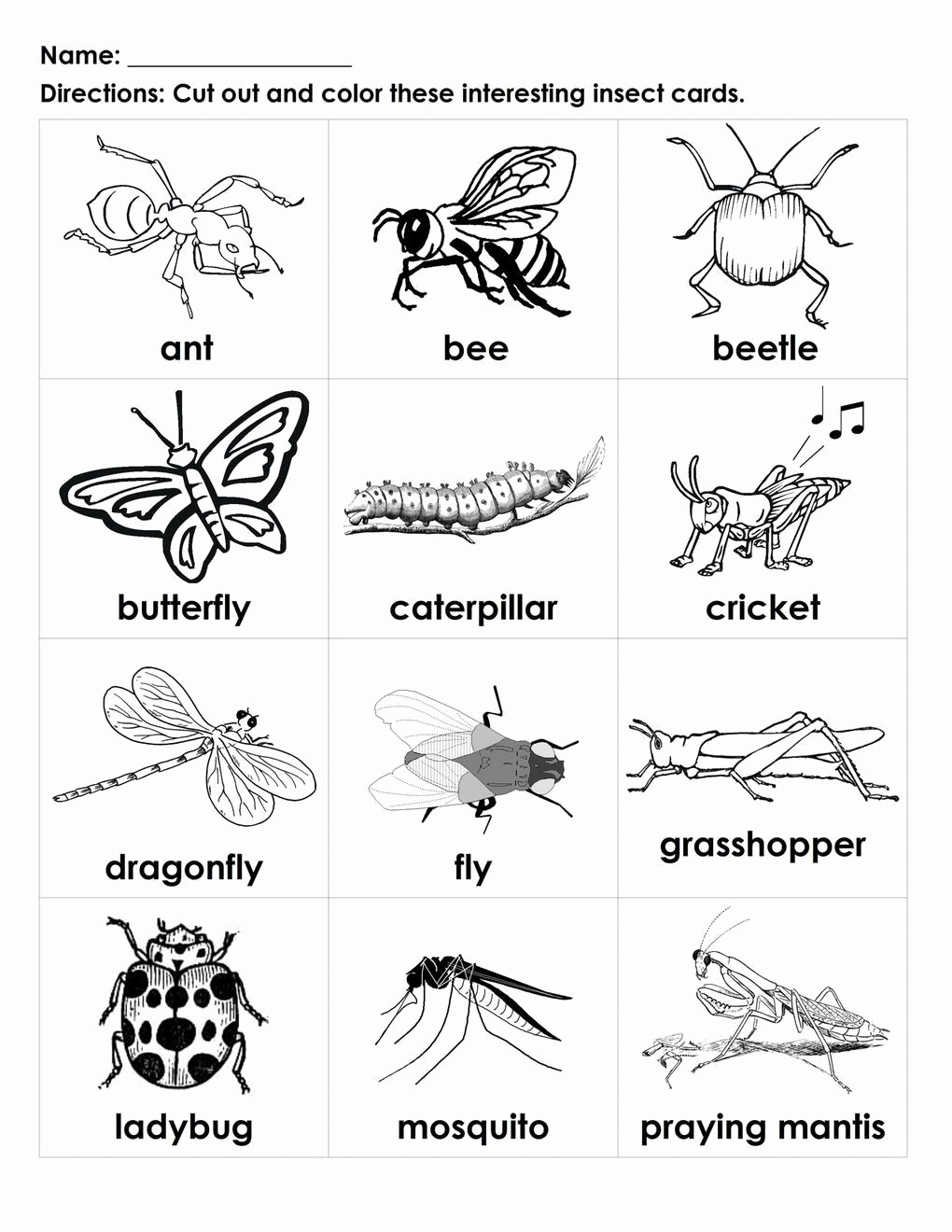 Insect Worksheets for Preschoolers Awesome Pin On Printable Worksheet for Kindergarten