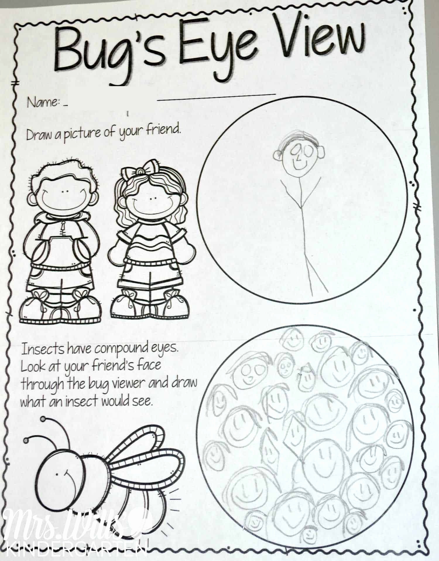 Insect Worksheets for Preschoolers Beautiful Insect Lesson Plans for Kindergarten