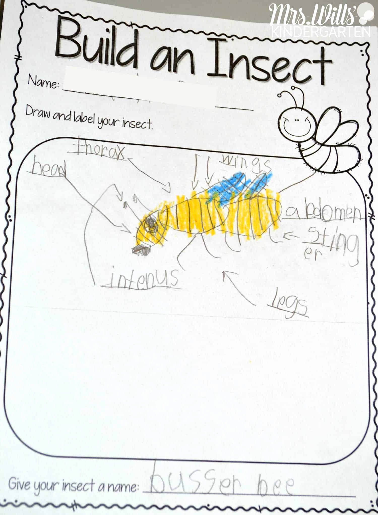 Insect Worksheets for Preschoolers Inspirational Insect Lesson Plans for Kindergarten
