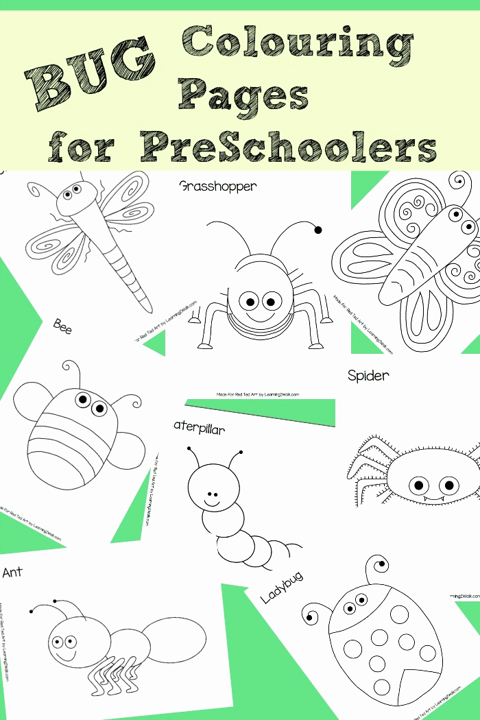 Insect Worksheets for Preschoolers Lovely 8 Free Bug Colouring Pages Perfect for Preschoolers Red