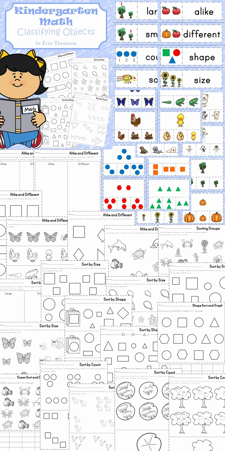 Kindergarten Math sorting Worksheets Beautiful Kindergarten Math Classifying Objects with Images