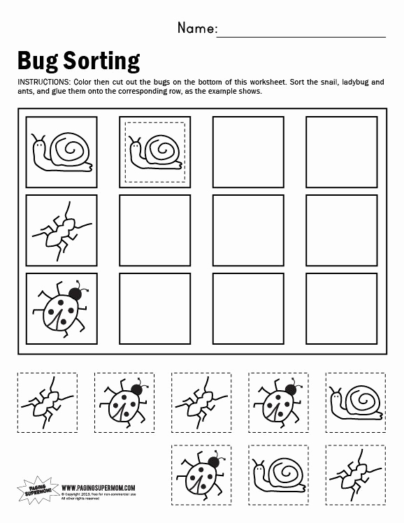 Kindergarten Math sorting Worksheets Unique Bug sorting Worksheet
