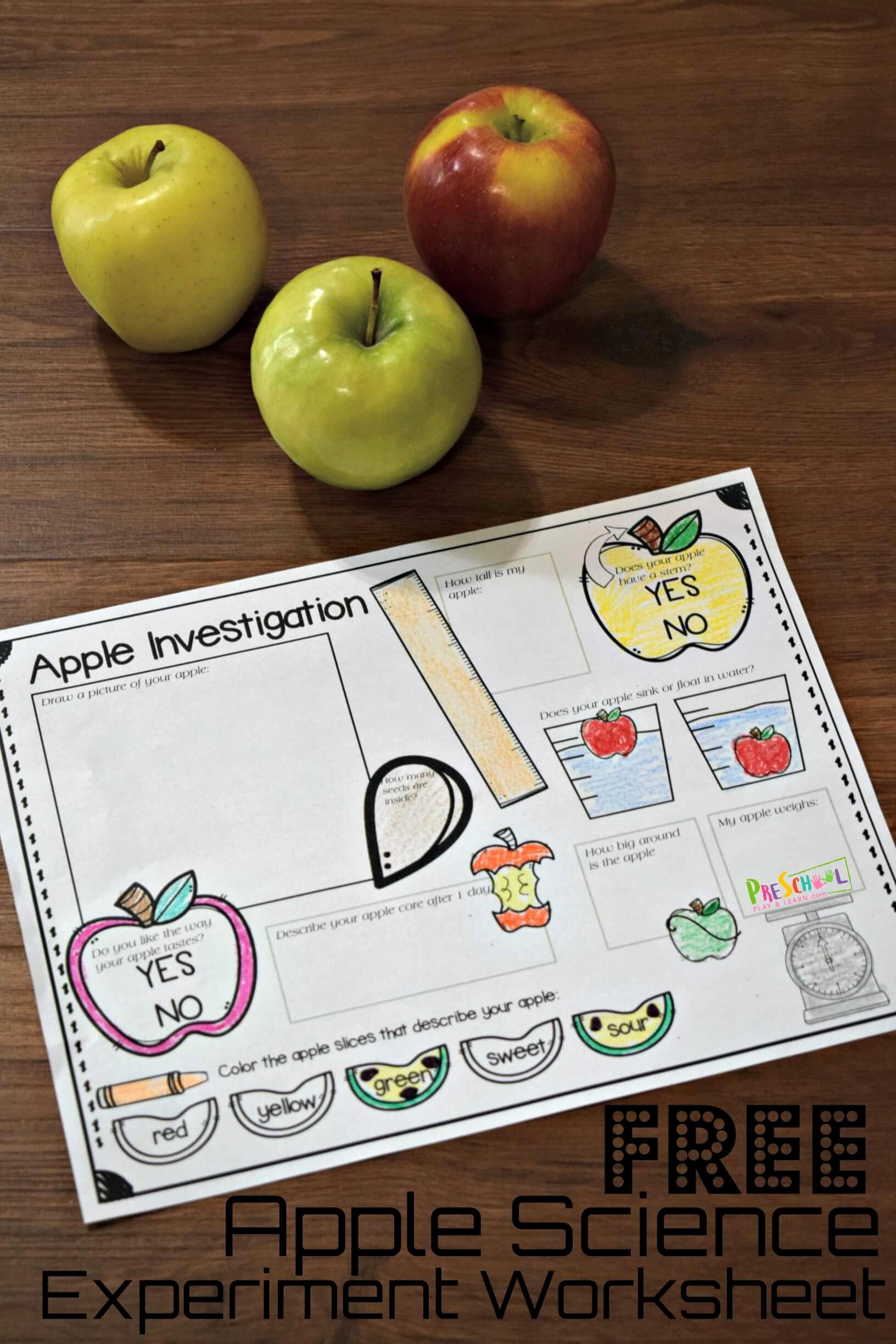 Kindergarten Science Worksheets Best Of Free Apple Science Experiment Worksheet