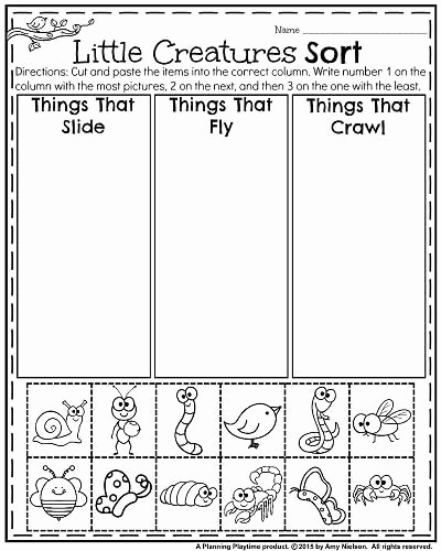 Kindergarten Science Worksheets Best Of Pin by Shelly Davis On Nature and Science Worksheets