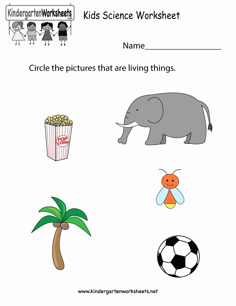 Kindergarten Science Worksheets Inspirational 17 Science Worksheet for Kindergarten Free