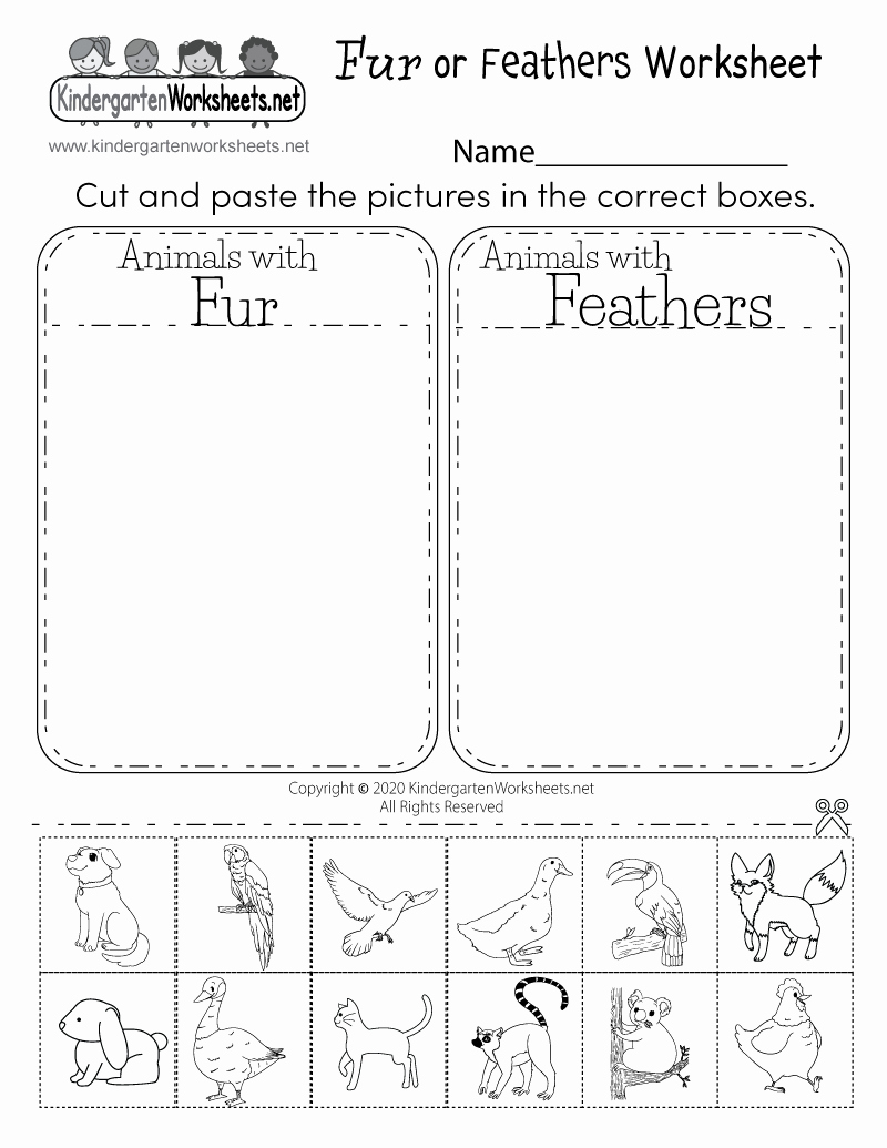 Kindergarten Science Worksheets Inspirational Life Science Student Worksheet Free Kindergarten