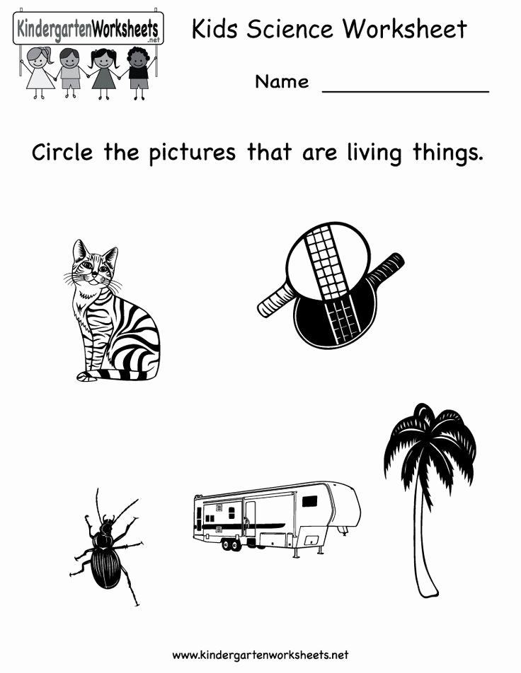 Kindergarten Science Worksheets Lovely Kindergarten Kids Science Worksheet Printable