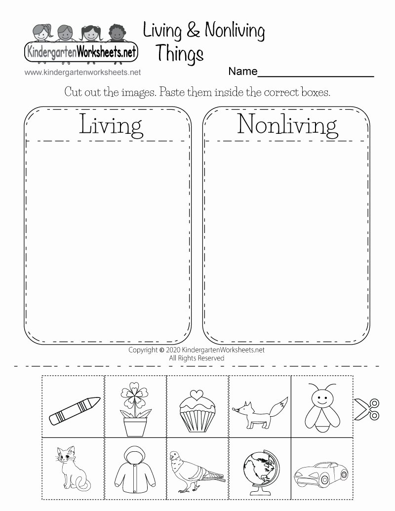 Kindergarten Science Worksheets Lovely Life Science Worksheet Free Kindergarten Learning