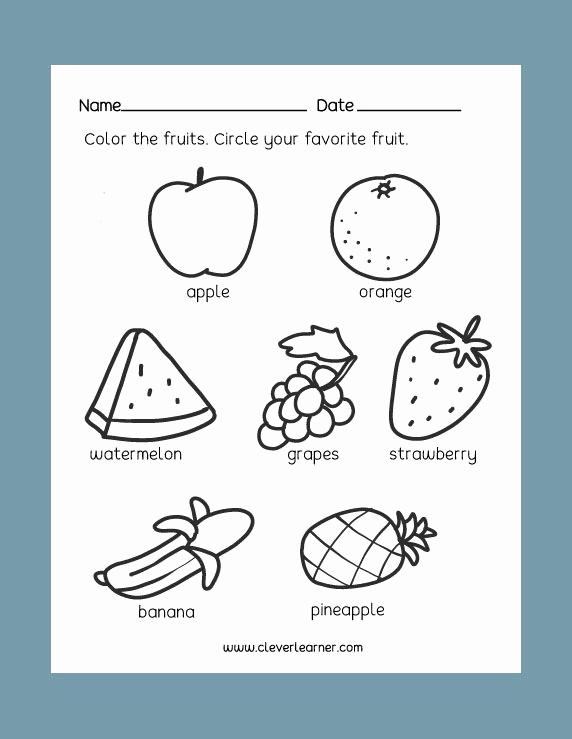 Kindergarten Science Worksheets Luxury 24 Best Preschool Science Activity Worksheet Images On