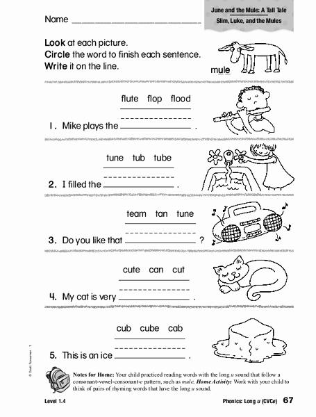 Long U sound Worksheet Inspirational Phonics Long U Worksheet for 1st 2nd Grade