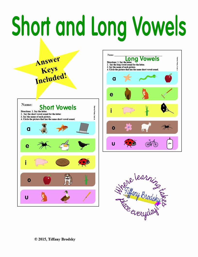 Long Vowel Worksheets Pdf Inspirational Short and Long Vowels Worksheets In Pdf