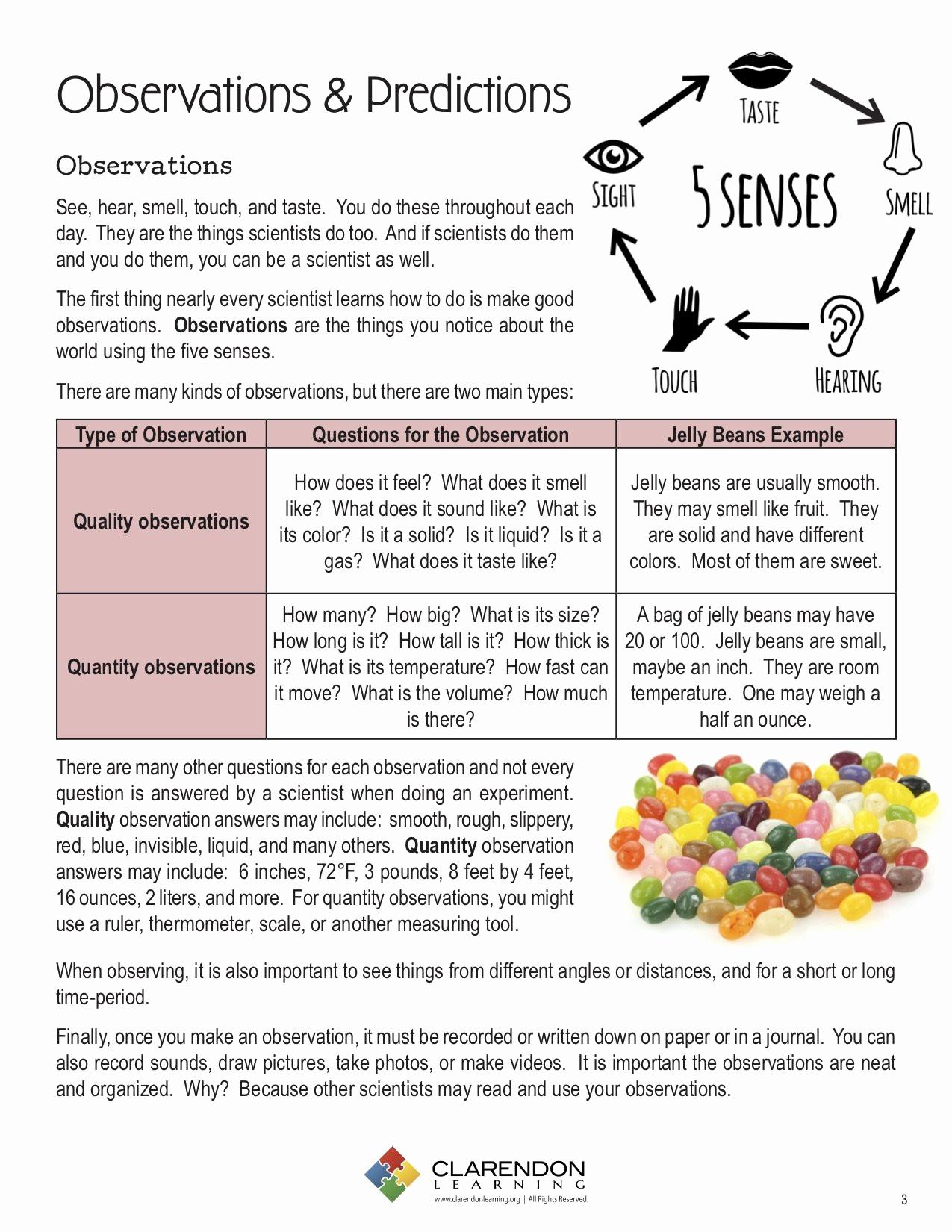 Making Predictions Worksheets 2nd Grade Beautiful 20 Donald In Mathmagic Land Worksheet