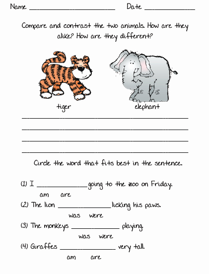 Mammals Worksheets for 2nd Grade Awesome Animal Worksheet New 503 Animal Worksheet for 2nd Grade