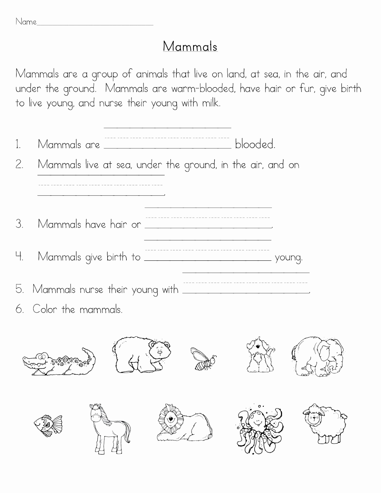 Mammals Worksheets for 2nd Grade Awesome Mammals Classroom Freebies