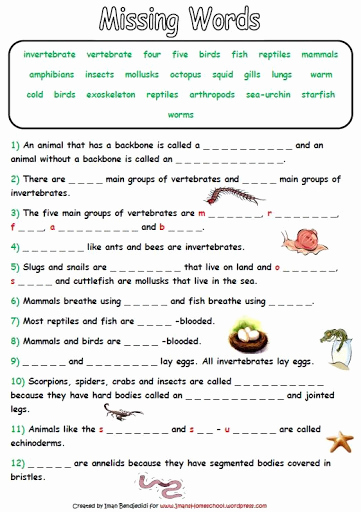 Mammals Worksheets for 2nd Grade Inspirational Mammals Grade 2 Worksheets Pets Lovers